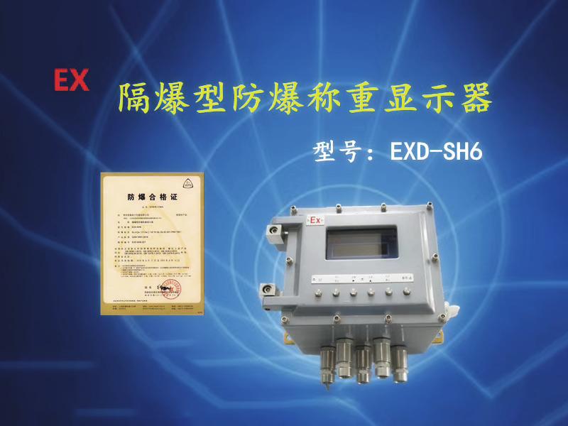 Explosion-proof weighing system (metering module)